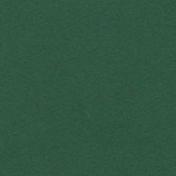 CARTULINA IRIS 50X65 185G VERDE AMAZONAS