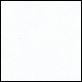 CARTULINA IRIS 50X65 185G BLANCO