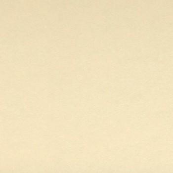 CARTULINA IRIS 50X65 185G CREMA