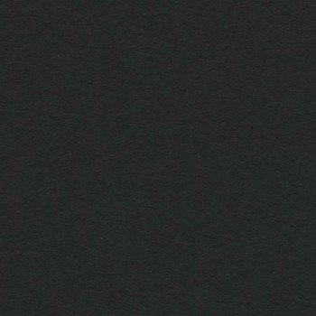 CARTULINA IRIS 50X65 185G NEGRO