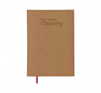 AG. DOHE PLANNING 21X29CM PERPETUO MARRON